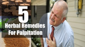 Herbal Remedies For Palpitation