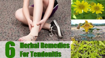 Herbal Remedies For Tendonitis