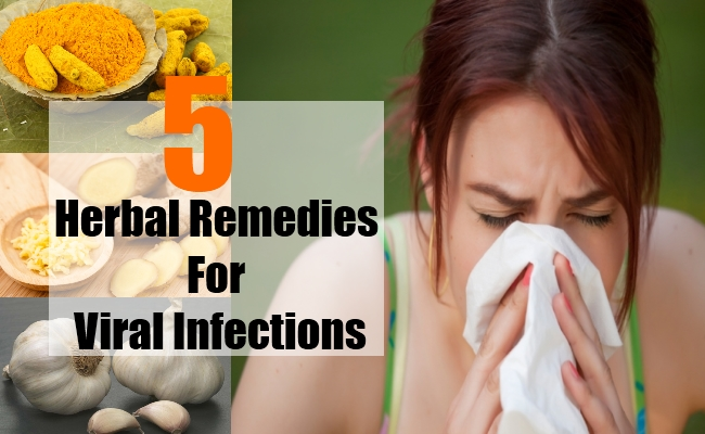 Herbal Remedies For Viral Infections