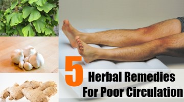 Herbal Remedies For Poor Circulation
