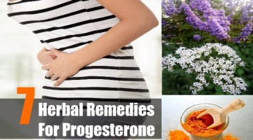 Herbal Remedies For Progesterone