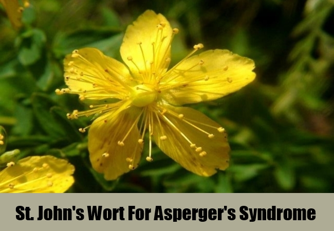 St. John's Wort For Asperger's Syndrome