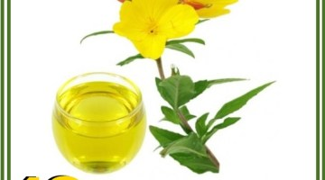 Health Benefits of Evening Primrose Oil
