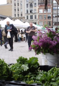 Union Square Greenmarket 09/11/11