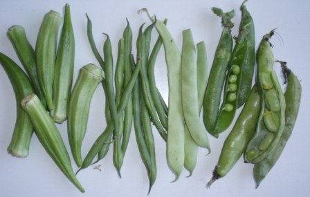 okra, pea and beans