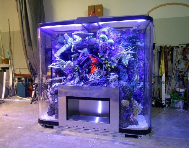 Aquarium Design And Engineering