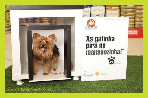 casinha para pet Art Pet Project  Seu pet também merece morar em uma mansãozinha