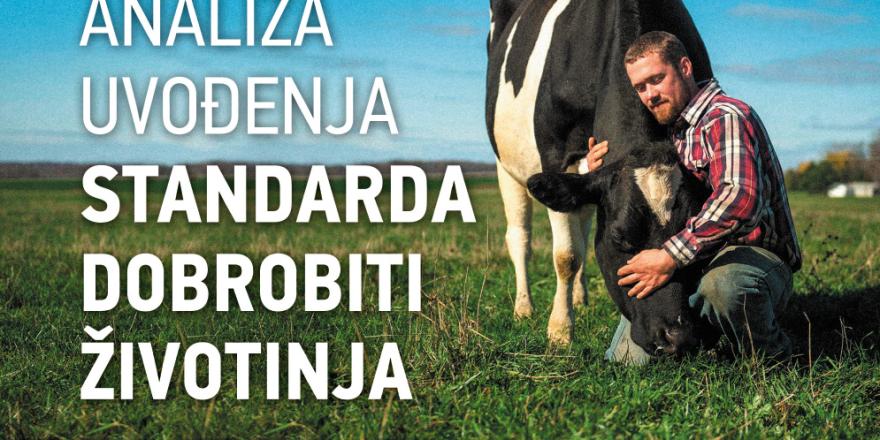 Pages from Ekonomska-analiza-web[1]