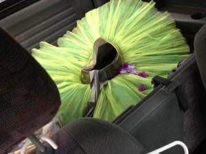 tutu in car
