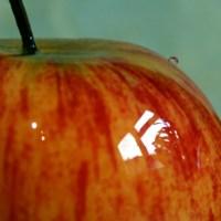 Apfel-Update - Rundum plus eins (inkl. Minirant)