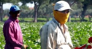 lavoratori-agricoli