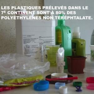 « LES BACTERIES NE RESOUDRONT PAS LE PROBLEME  DE LA PLATISPHÈRE OCEANIQUE »