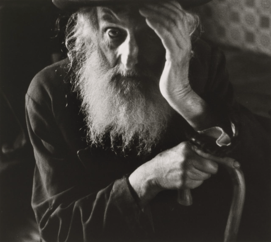 This is not my friend Curt Biren. But I could not resist using this picture by the great photographer Roman Vishniac of A Jewish Elder of the Village, Vysni Apsa, Carpathian Ruthenia, Ukraine c.1935