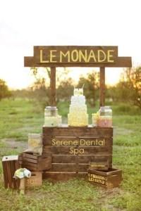 rustic lemonade stand 1