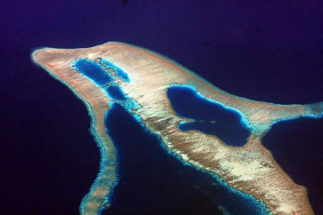 Pulau Lumba-Lumba