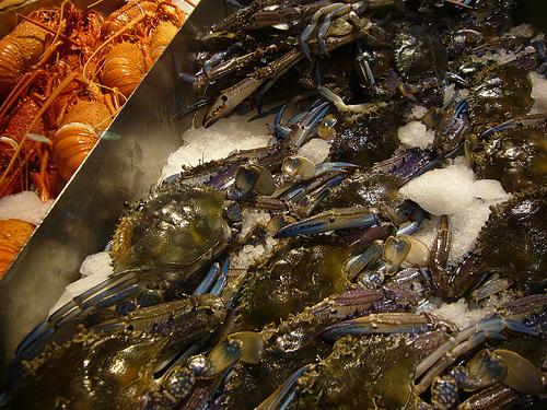 Fishmarket et Chinatown