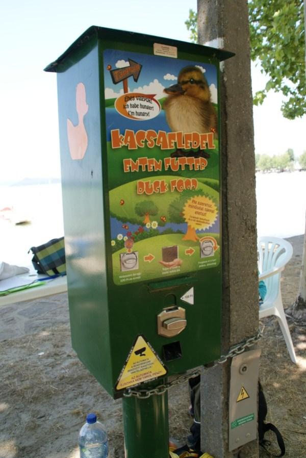 blog voyage hongrie europe food duck graines grain lac balaton
