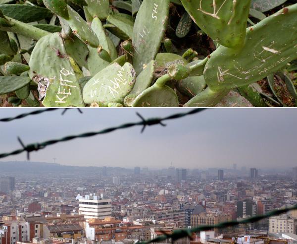 blog voyage australie espagne barcelone cactus city