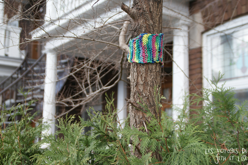 blog voyage canada montreal pvt street art arbre tricot pull couleur