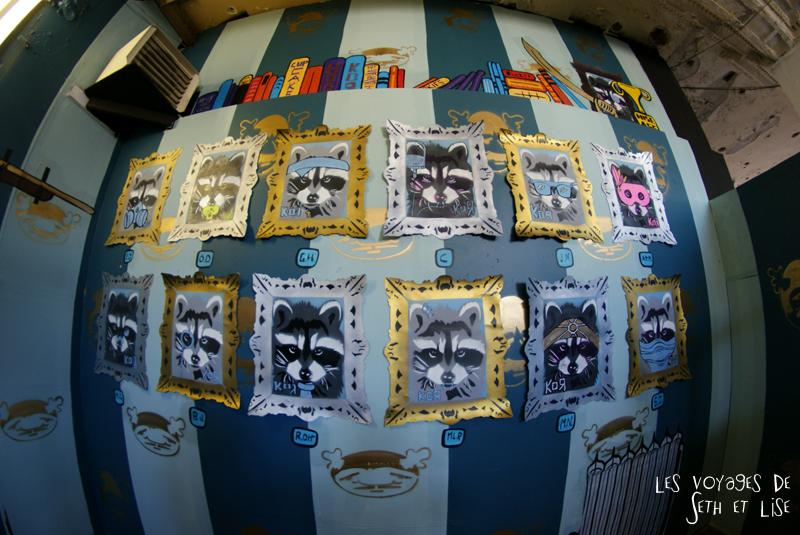 blog pvt canada montreal voyage espace frais peint exposition street art raton laveur portrait tableau fish eye