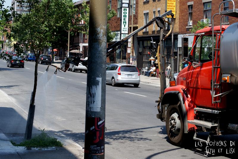 blog pvt canada montreal quebec couple voyage tour du monde camion arrose arbre insolite