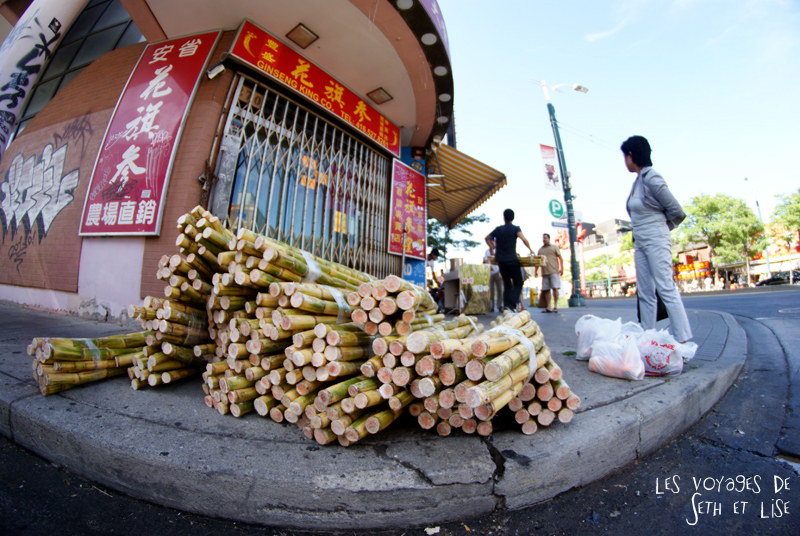 blog pvt canada whv toronto ontartio couple voyage travel tour du monde bamboo bambou chinatown
