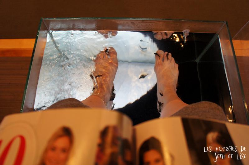 blog canada montreal pvt couple voyage tour monde photo insolite fish pedicure st denis poisson pied