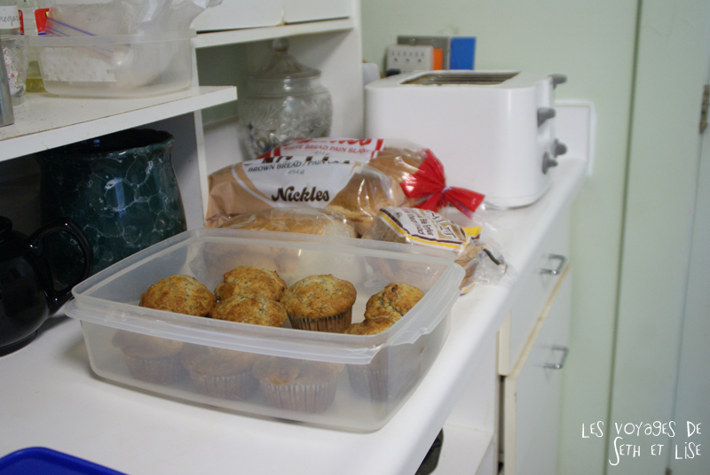 blog voyage canada photo pvt niagara falls ontario oldschool muffin