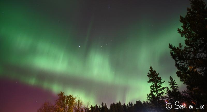 aurora_edmonton.jpg
