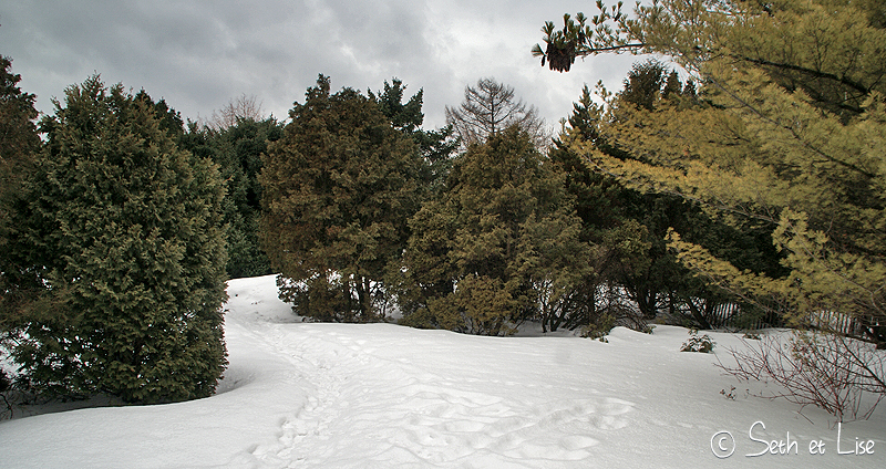 blog pvt canada montreal photographie couple tour du monde botanic garden jardin botanique chinois chemin