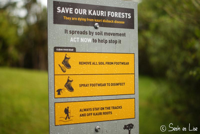blog nouvelle zelande voyage photographie whv couple tour du monde Waitakere Ranges sign foot pied