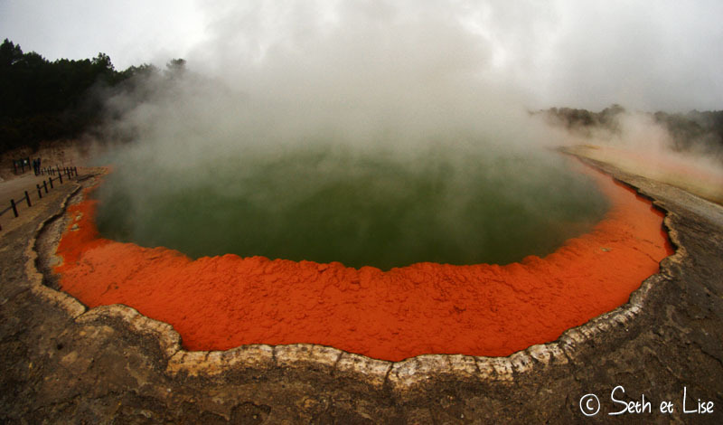 Wai-o-tapu, geyser et mares colorées