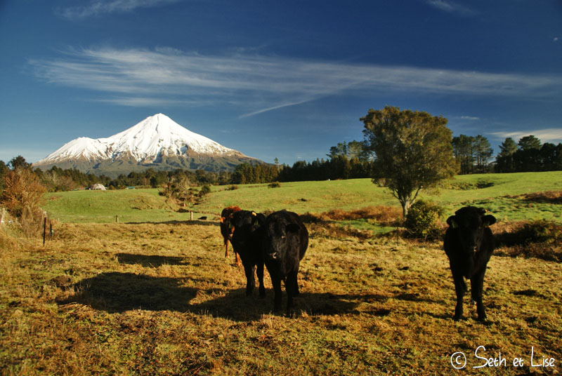 blog voyage canada australie nz pvt whv taranaki photo bd