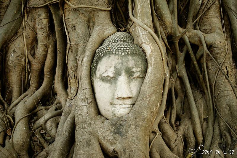 tete buddha