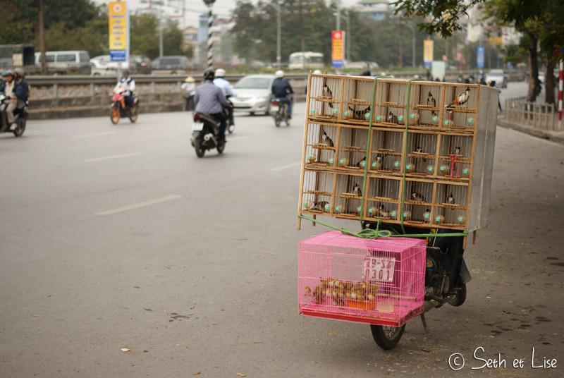 blog voyage hanoi vietnam photo