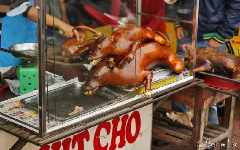 Où manger du chien à Hanoi
