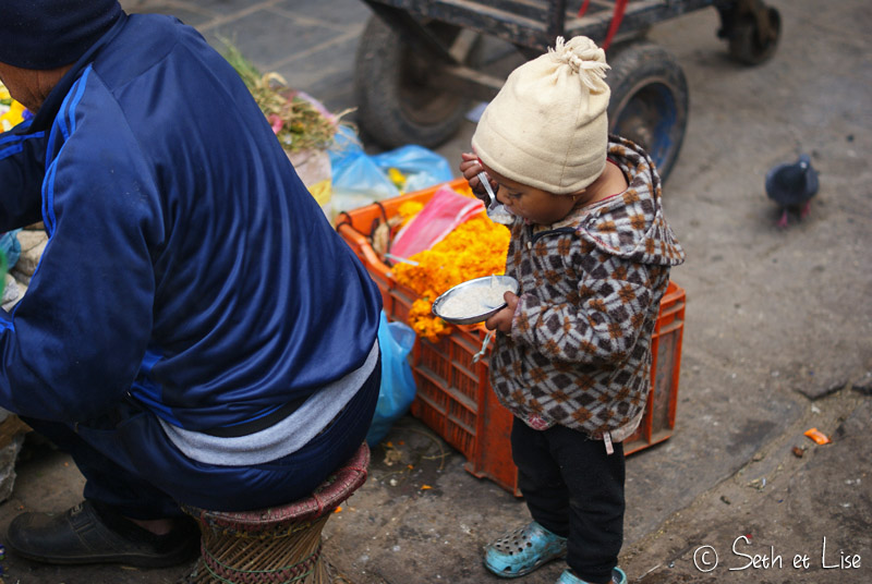 voyage nepal nepalais