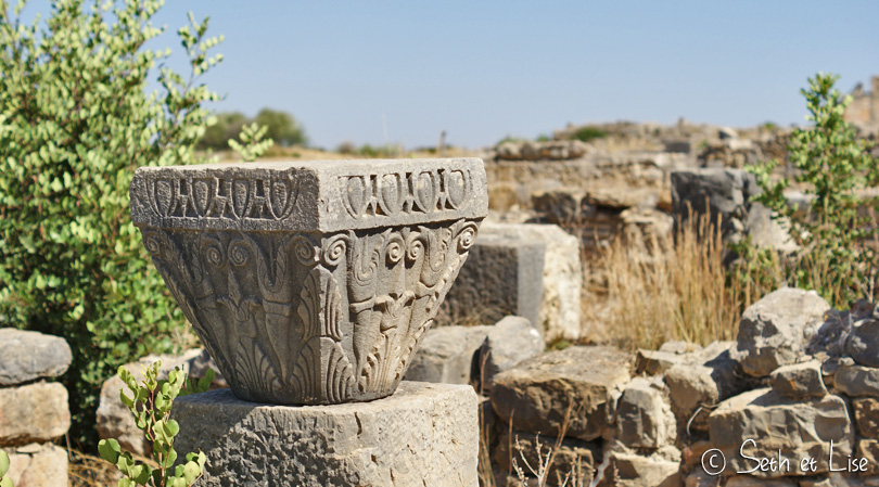 sculpture volubilis