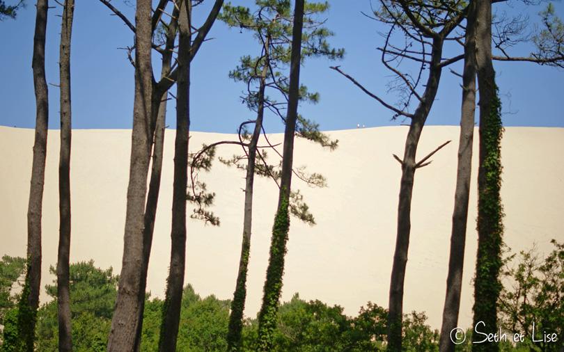 dune du pilat sand