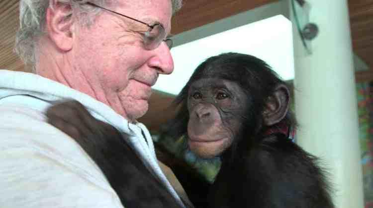 <em>Unlocking the Cage</em> on chimpanzee rights