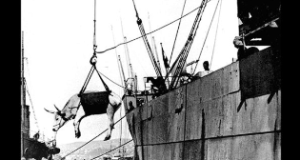 canakkale_1915