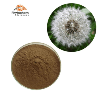 Dandelion Extract [Chinese Name]  Pu Gong Ying