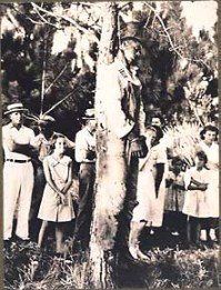 "Young Rubin Stacy, lynched July 19, 1935, in Fort Lauderdale, Fla., was riddled with bullets both before and after he was hanged. James Weldon Johnson described the epidemic of whites lynching blacks as a ""problem of saving black America's body and white America's soul."""