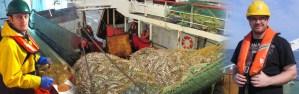sustainable_fisheries