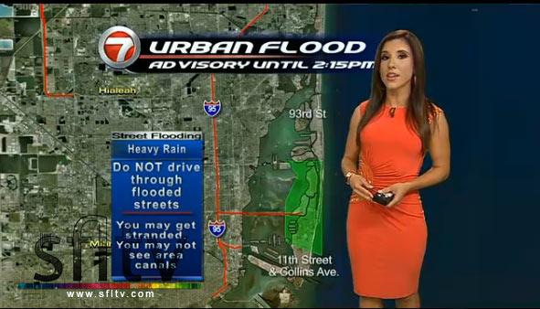 Vivian Gonzalez WSVN Channel 7 News meteorologist