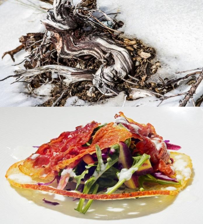 Shaun Alexander and Chef Christian Fashion Italian dinning