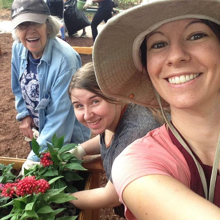 Volunteering on MLK Day planting gardens at Focal Point Seniorhellip