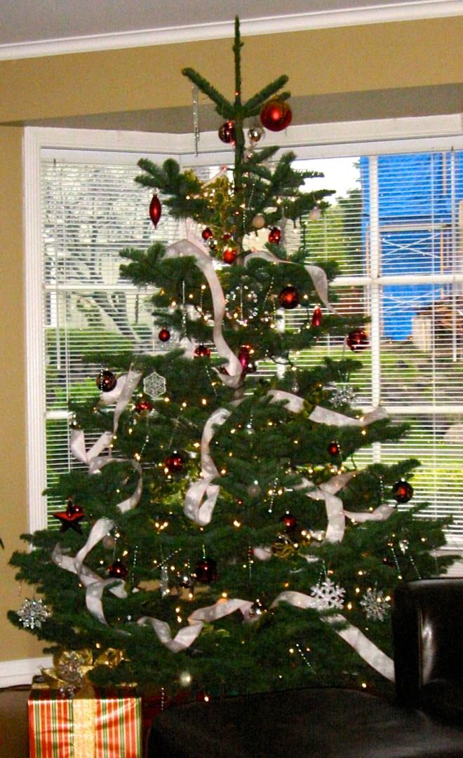 Real Xmas Tree