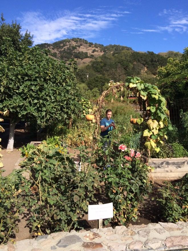 Shaun in RSV garden