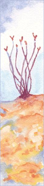 Desert 2. 1.5 x 6, watercolor on Arches 140 lb. cold pressed paper. © 2016 Sheila Delgado